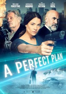 MOVIE: A Perfect Plan (2020)