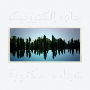 Album:-Jay Electronica – A Written Testimony